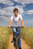 Teen riding a bicycle. Through a wheat field royalty free stock photography
