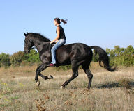 Teen and  speedy horse. Young woman and her friend black stallion Royalty Free Stock Image