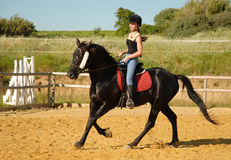 Teen and working horse Royalty Free Stock Photos
