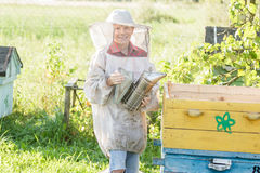Teenage beekeeper checking hives on bee yard Royalty Free Stock Photo