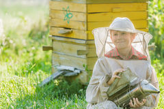 Teenage beekeeper with painted wooden beehives Stock Photography
