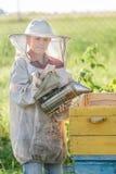Teenage beekeeper and seasonal honey harvesting Royalty Free Stock Photography
