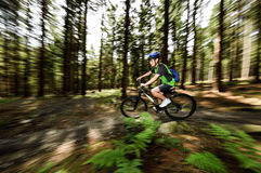 Teenage boy biking on forest trails Royalty Free Stock Photo