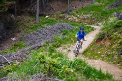 Teenage boy biking on forest trails Stock Images