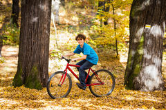 Teenage boy biking Stock Image