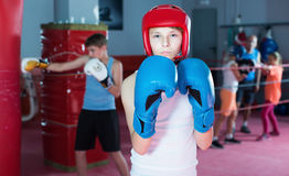 Teenage boy boxer posing during boxing exercising Stock Photos