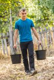 Teenage boy carrying buckets of plums Stock Photography
