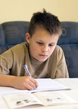 Teenage boy doing homework stock photo