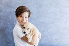 Teenage boy holding the golden retriever baby. Dog by the wall royalty free stock image