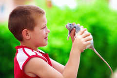 Teenage boy playing with rat pet Royalty Free Stock Photography