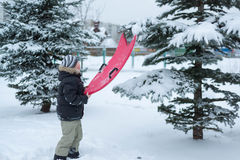 Teenage boy playing snow in winter Royalty Free Stock Images