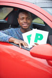 Teenage Boy Recently Passed Driving Test Holding P Plates Stock Photography