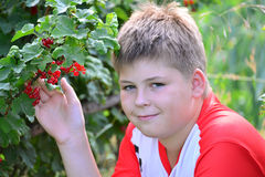 Teenage boy sitting near a red currant in  garden Stock Image
