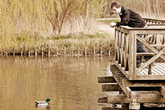 Teenage boy standing watching a duck Stock Images