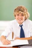 Teenage boy studying Stock Photo
