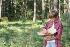 Teenage boy tasting fresh red wildberries Stock Image