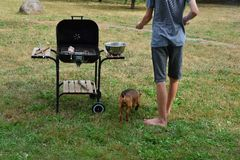 Boy grilling meat royalty free stock image