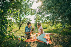 Teenage couple dating on picnic Stock Photos