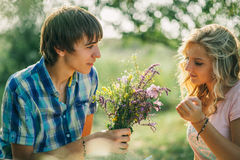 Teenage couple dating on picnic Stock Images