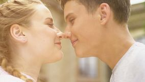 Teenage couple nuzzling, first love, pure relations in adolescence, closeup. Stock footage stock video footage