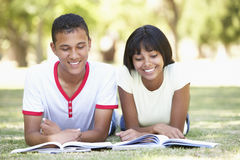 Teenage Couple Studying In Park Stock Photo