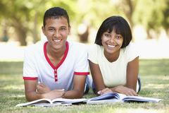 Teenage Couple Studying In Park Stock Photos