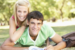 Teenage Couple Studying Together In Park Stock Photo