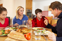 Teenage Family Having Argument stock image