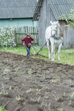 Teenage farmer boy working land in traditional way with horse and plough Royalty Free Stock Photo