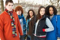 Teenage Friends Having Fun In Snowy Landscape Royalty Free Stock Photo