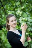 Teenage girl at apple tree Stock Photography