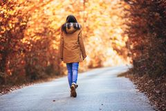 Teenage girl in the autumn forest royalty free stock images
