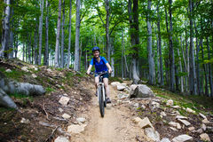 Teenage girl biking on forest trails Royalty Free Stock Photography