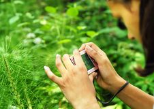 Teenage girl with a camera Royalty Free Stock Photo