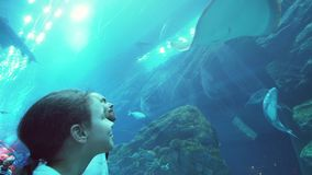 Teenage girl with Dad watching the fish in Aquarium stock footage video. Teenage girl with Dad watching the fish in the Aquarium stock footage video stock footage