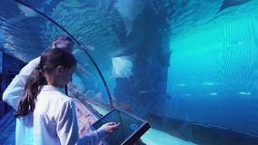 Teenage girl with Dad watching the fish in Aquarium stock footage video. Teenage girl with Dad watching the fish in the Aquarium stock footage video stock video
