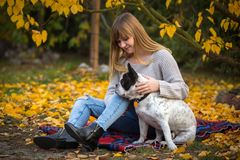 Teenage girl with a dog. In autumnal park royalty free stock photography