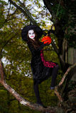 Teenage girl dressed in witch costume sitting on the tree Royalty Free Stock Photo