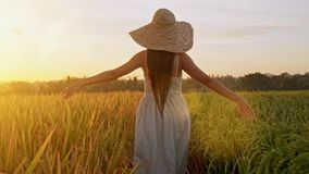 Sensual young woman in white dress enjoying in violet lavender filed at beautiful summer sunset. Young female enjoying stock footage
