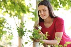 Teenage girl exploring bush outdoors. Summer camp stock photo