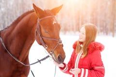 Teenage girl feeding bay horse on winter field stock photos