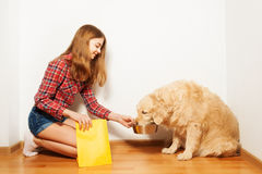 Teenage girl feeding her Golden Retriever doggy. Careful teenage girl feeding her Golden Retriever doggy with forage, sitting on her knees at the floor against Stock Image