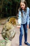 Teenage girl feeding mocaco monkey Stock Photo