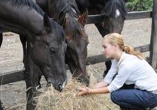 Teenage girl feeds horse Stock Photo