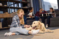 Teenage girl having fun with golden retriever dog while friends sitting on sofa. Smiling teenage girl having fun with golden retriever dog while friends sitting Royalty Free Stock Photography