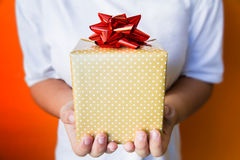 Teenage girl holding a gift box for you Stock Photography