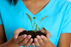 Teenage Girl Holding Plant Royalty Free Stock Images