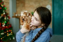A teenage girl hugging a dog. The concept of a Merry Christmas, holiday, family royalty free stock photo