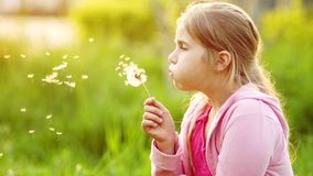 A teenage girl with long blond hair is blowing a dandelion. Spring glade. Camping. Spring Break. Children`s Day.  stock video footage