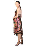 Teenage girl with long dress. Teenage girl  with long dress standing in white background Royalty Free Stock Images